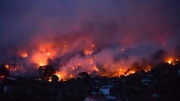 Incendios en Grecia reportan al menos 74 muertos y más de 200 heridos