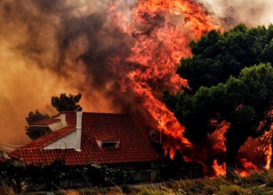 Incendios en Grecia reportan al menos 74 muertos y más de 200 heridos 1
