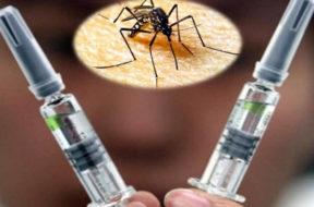 EEUU implementa una vacuna contra el zika