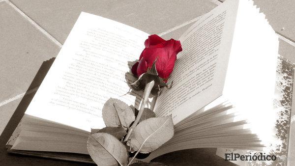 Rosas por Sant Jordi 2021 1