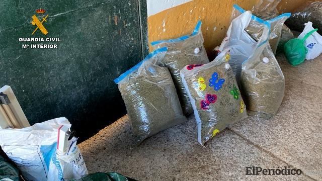 En Andalucía La Guardía Civil desmantela una importante organización polaca de narcotraficantes 1